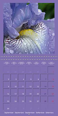 Fantastic Iris (Wall Calendar 2019 300 × 300 mm Square) - Produktdetailbild 9