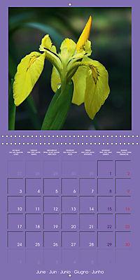 Fantastic Iris (Wall Calendar 2019 300 × 300 mm Square) - Produktdetailbild 6
