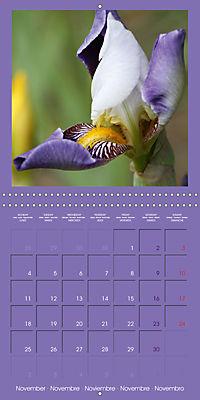 Fantastic Iris (Wall Calendar 2019 300 × 300 mm Square) - Produktdetailbild 11
