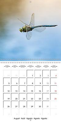 Fantastic Odonata (Wall Calendar 2019 300 × 300 mm Square) - Produktdetailbild 8