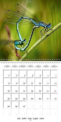 Fantastic Odonata (Wall Calendar 2019 300 × 300 mm Square) - Produktdetailbild 7