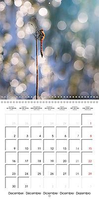 Fantastic Odonata (Wall Calendar 2019 300 × 300 mm Square) - Produktdetailbild 12