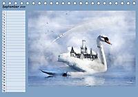 Fantastische Vögel (Tischkalender 2019 DIN A5 quer) - Produktdetailbild 9