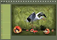 Fantastische Vögel (Tischkalender 2019 DIN A5 quer) - Produktdetailbild 7