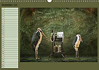 Fantastische Vögel (Wandkalender 2019 DIN A3 quer) - Produktdetailbild 12