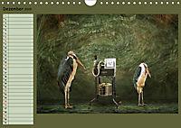 Fantastische Vögel (Wandkalender 2019 DIN A4 quer) - Produktdetailbild 12