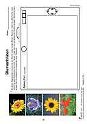 Farbe - Komplette Theorie und Praxis im modernen Kunstunterricht, Sekundarstufe - Produktdetailbild 7