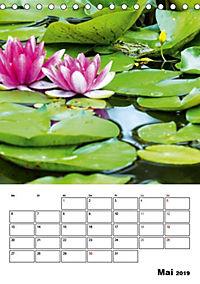 Farben der Natur (Tischkalender 2019 DIN A5 hoch) - Produktdetailbild 5