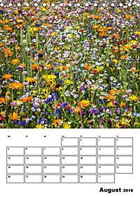 Farben der Natur (Tischkalender 2019 DIN A5 hoch) - Produktdetailbild 8