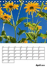 Farben der Natur (Tischkalender 2019 DIN A5 hoch) - Produktdetailbild 4