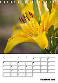 Farben der Natur (Tischkalender 2019 DIN A5 hoch) - Produktdetailbild 2