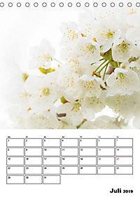 Farben der Natur (Tischkalender 2019 DIN A5 hoch) - Produktdetailbild 7