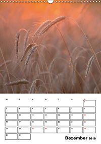 Farben der Natur (Wandkalender 2019 DIN A3 hoch) - Produktdetailbild 12