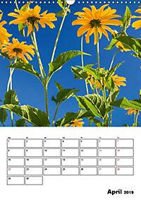 Farben der Natur (Wandkalender 2019 DIN A3 hoch) - Produktdetailbild 4