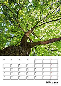 Farben der Natur (Wandkalender 2019 DIN A3 hoch) - Produktdetailbild 3
