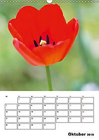 Farben der Natur (Wandkalender 2019 DIN A3 hoch) - Produktdetailbild 10