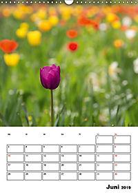 Farben der Natur (Wandkalender 2019 DIN A3 hoch) - Produktdetailbild 6
