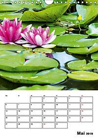 Farben der Natur (Wandkalender 2019 DIN A4 hoch) - Produktdetailbild 5