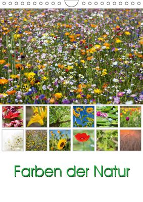 Farben der Natur (Wandkalender 2019 DIN A4 hoch), Thomas Klinder