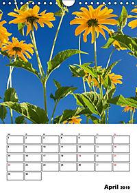 Farben der Natur (Wandkalender 2019 DIN A4 hoch) - Produktdetailbild 4