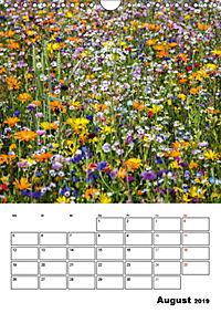 Farben der Natur (Wandkalender 2019 DIN A4 hoch) - Produktdetailbild 8