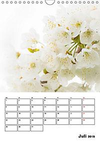 Farben der Natur (Wandkalender 2019 DIN A4 hoch) - Produktdetailbild 7