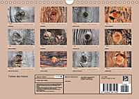 Farben des Holzes (Wandkalender 2019 DIN A4 quer) - Produktdetailbild 13