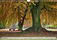 Farben stimmen fröhlich - Bunte Foto-Vielfalt in HDR-Technik (Wandkalender 2019 DIN A4 quer) - Produktdetailbild 11