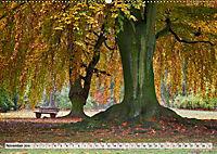 Farben stimmen fröhlich - Bunte Foto-Vielfalt in HDR-Technik (Wandkalender 2019 DIN A2 quer) - Produktdetailbild 11