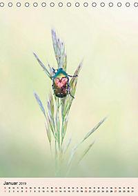 Farben und Lichter - der Natur (Tischkalender 2019 DIN A5 hoch) - Produktdetailbild 1