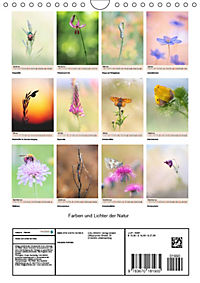 Farben und Lichter - der Natur (Wandkalender 2019 DIN A4 hoch) - Produktdetailbild 13