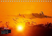 Farbenfrohe Welt (Tischkalender 2019 DIN A5 quer) - Produktdetailbild 5