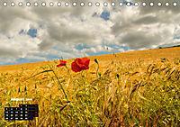 Farbenfrohe Welt (Tischkalender 2019 DIN A5 quer) - Produktdetailbild 8