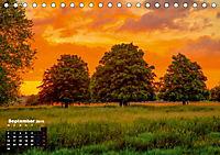 Farbenfrohe Welt (Tischkalender 2019 DIN A5 quer) - Produktdetailbild 9
