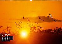 Farbenfrohe Welt (Wandkalender 2019 DIN A2 quer) - Produktdetailbild 5