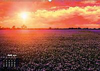 Farbenfrohe Welt (Wandkalender 2019 DIN A2 quer) - Produktdetailbild 6