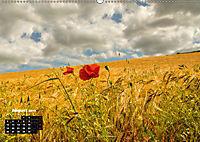 Farbenfrohe Welt (Wandkalender 2019 DIN A2 quer) - Produktdetailbild 8