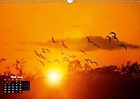 Farbenfrohe Welt (Wandkalender 2019 DIN A3 quer) - Produktdetailbild 5