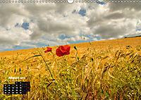 Farbenfrohe Welt (Wandkalender 2019 DIN A3 quer) - Produktdetailbild 8