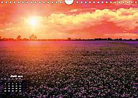 Farbenfrohe Welt (Wandkalender 2019 DIN A4 quer) - Produktdetailbild 6