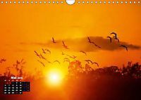 Farbenfrohe Welt (Wandkalender 2019 DIN A4 quer) - Produktdetailbild 5