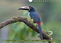 Farbenfrohes Costa RicaAT-Version (Wandkalender 2019 DIN A4 quer) - Produktdetailbild 8