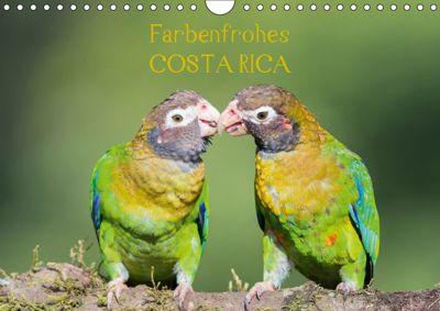 Farbenfrohes Costa RicaAT-Version (Wandkalender 2019 DIN A4 quer), Sonja Jordan