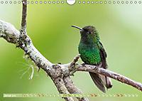 Farbenfrohes Costa RicaAT-Version (Wandkalender 2019 DIN A4 quer) - Produktdetailbild 1