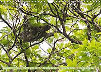 Farbenfrohes Costa RicaAT-Version (Wandkalender 2019 DIN A4 quer) - Produktdetailbild 3