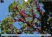 Farbenfrohes Costa RicaAT-Version (Wandkalender 2019 DIN A4 quer) - Produktdetailbild 7