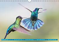 Farbenfrohes Costa RicaAT-Version (Wandkalender 2019 DIN A4 quer) - Produktdetailbild 11