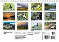 Farbenfrohes Costa RicaAT-Version (Wandkalender 2019 DIN A4 quer) - Produktdetailbild 13