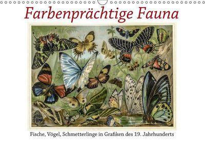Farbenprächtige Fauna. Fische, Vögel, Schmetterlinge in Grafiken des 19 Jahrhunderts (Wandkalender 2019 DIN A3 quer), Jost Galle