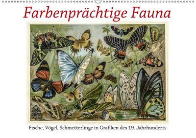 Farbenprächtige Fauna. Fische, Vögel, Schmetterlinge in Grafiken des 19 Jahrhunderts (Wandkalender 2019 DIN A2 quer), Jost Galle